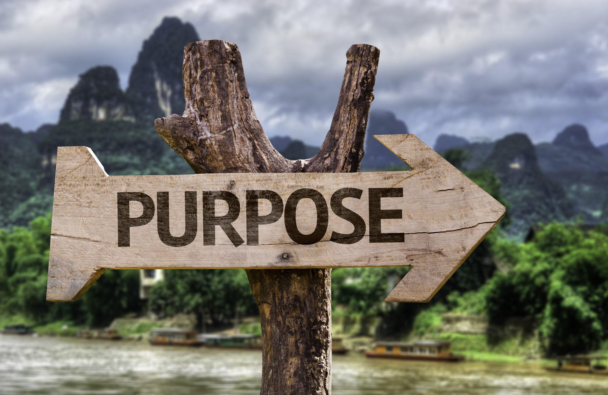 De gouden uil - Purpose - Misbruik